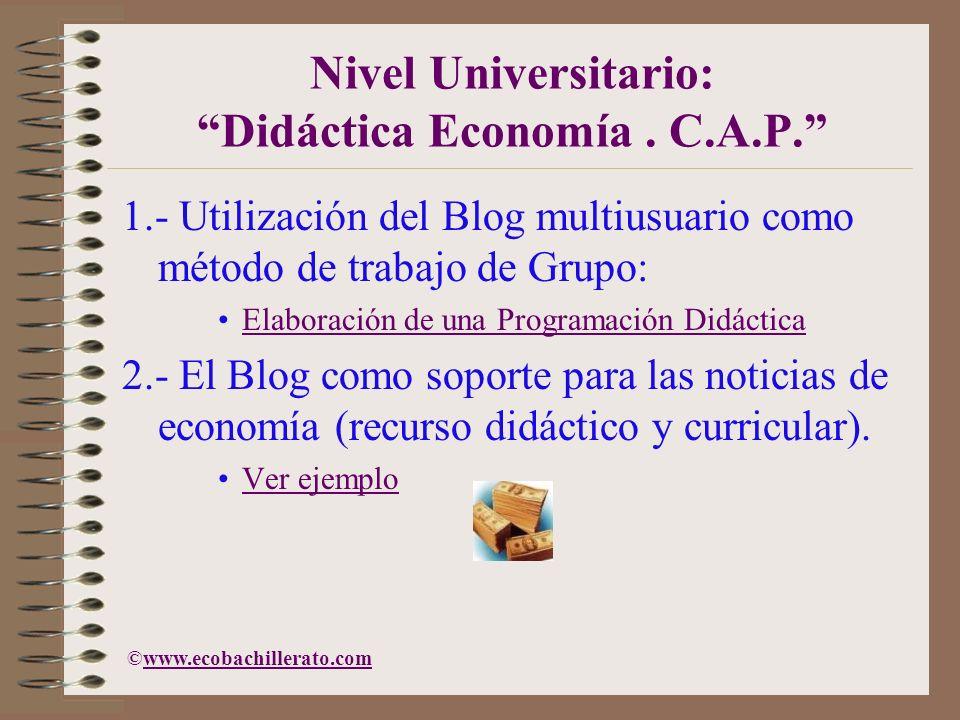 Nivel Universitario: Didáctica Economía. C.A.P. 1.- Utilización del Blog multiusuario como método de trabajo de Grupo: Elaboración de una Programación