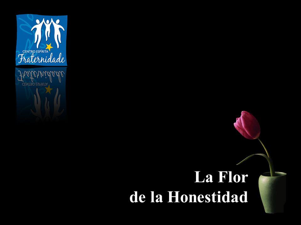 La honestidad es como una flor tejida con hilos de luz, que ilumina a quien la cultiva y esparce claridad en derredor.