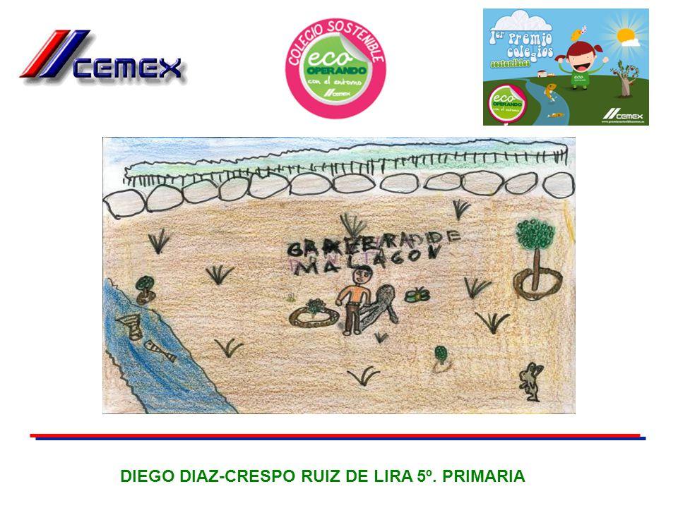 DIEGO DIAZ-CRESPO RUIZ DE LIRA 5º. PRIMARIA