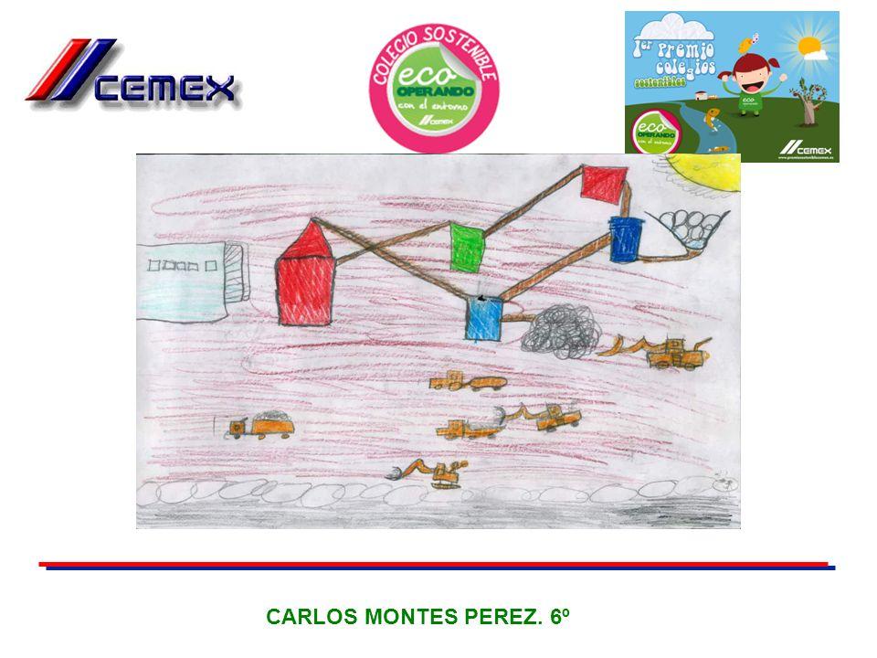 CARLOS MONTES PEREZ. 6º