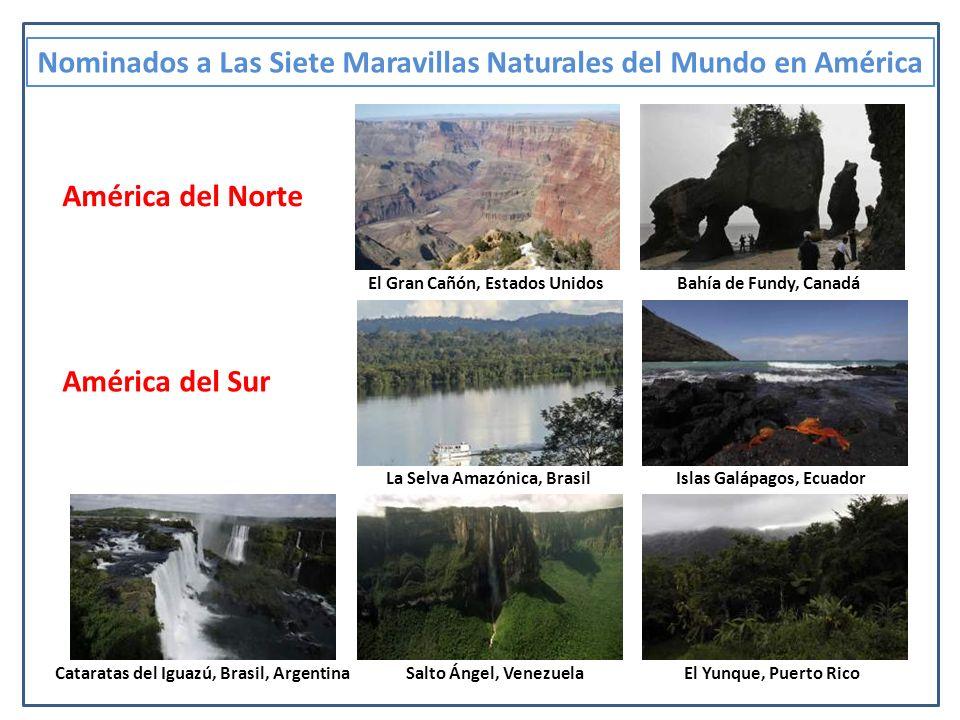 El salto Ángel (su nombre en Pemón: Kerepakupai-merú o Churún-merú ) es la catarata más alta del mundo, con una altura de 979 m (807 m de caída ininterrumpida), generada por la caída del río Churún desde el Auyantepuy; está ubicado en el Parque Nacional Canaima, en el estado Bolívar, Venezuela.