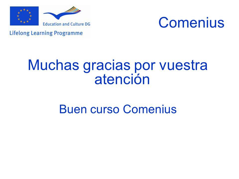 Comenius Muchas gracias por vuestra atención Buen curso Comenius