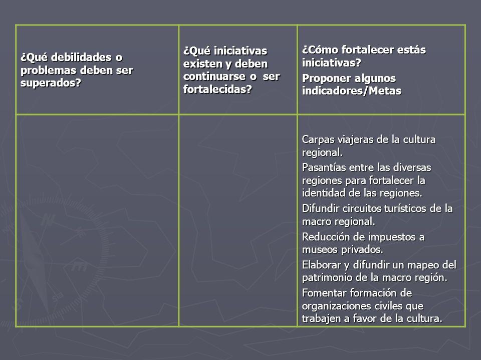 ¿Qué debilidades o problemas deben ser superados? ¿Qué iniciativas existen y deben continuarse o ser fortalecidas? ¿Cómo fortalecer estás iniciativas?