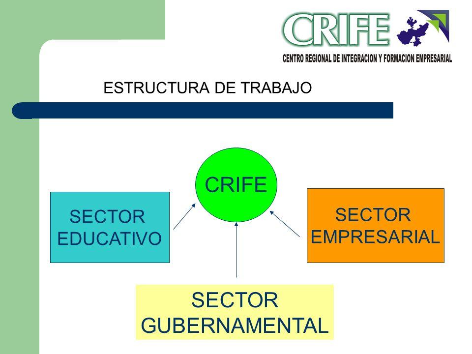 SECTOR EDUCATIVO SECTOR EMPRESARIAL CRIFE SECTOR GUBERNAMENTAL ESTRUCTURA DE TRABAJO
