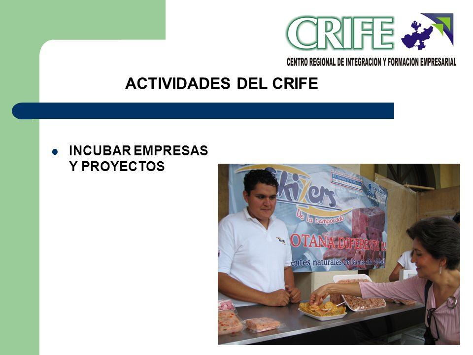 INCUBAR EMPRESAS Y PROYECTOS ACTIVIDADES DEL CRIFE