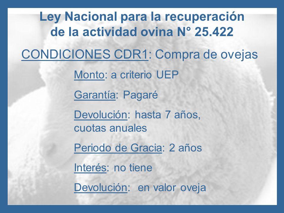 Ley Nacional para la recuperación de la actividad ovina N° 25.422 CONDICIONES CDR1: Compra de ovejas Monto: a criterio UEP Garantía: Pagaré Devolución
