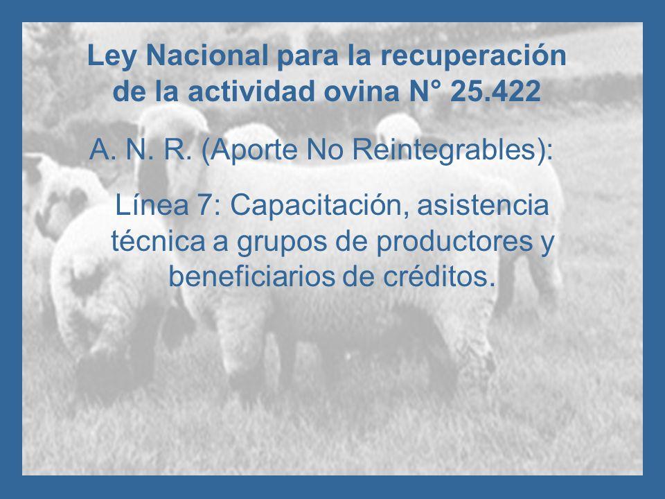 Ley Nacional para la recuperación de la actividad ovina N° 25.422 A. N. R. (Aporte No Reintegrables): Línea 7: Capacitación, asistencia técnica a grup