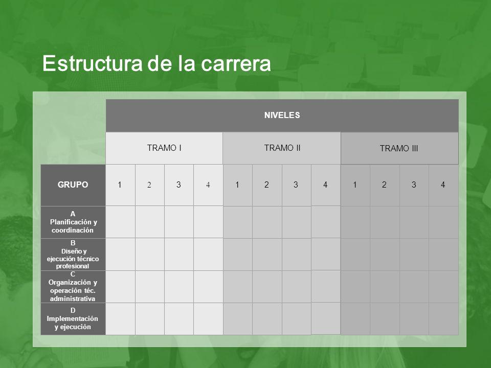 Grupo: es el conjunto de trabajadores/as del Estado cuyas tareas pueden reunirse en una misma tipología.