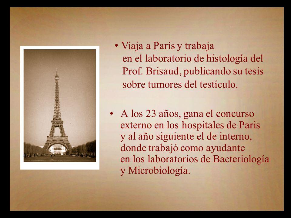 Viaja a París y trabaja en el laboratorio de histología del Prof.