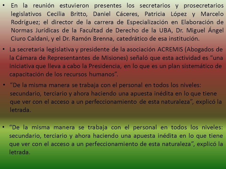 En la reunión estuvieron presentes los secretarios y prosecretarios legislativos Cecilia Britto, Daniel Cáceres, Patricia López y Marcelo Rodríguez; el director de la carrera de Especialización en Elaboración de Normas Jurídicas de la Facultad de Derecho de la UBA, Dr.