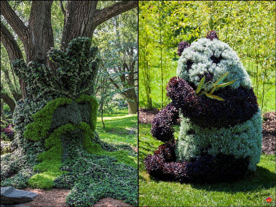el mayor concurso internacional de esculturas en el jardín Mosaicultures Internationales de Montreal en 2013, en la que más de doscientos participante