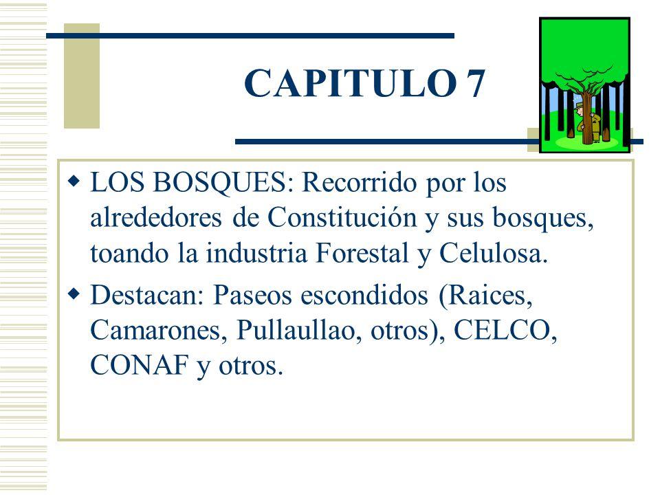 CAPITULO 7 LOS BOSQUES: Recorrido por los alrededores de Constitución y sus bosques, toando la industria Forestal y Celulosa.