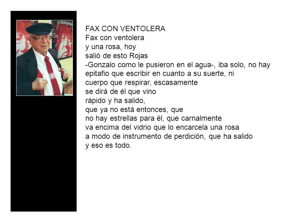 FAX CON VENTOLERA Fax con ventolera y una rosa, hoy salió de esto Rojas -Gonzalo como le pusieron en el agua-, iba solo, no hay epitafio que escribir