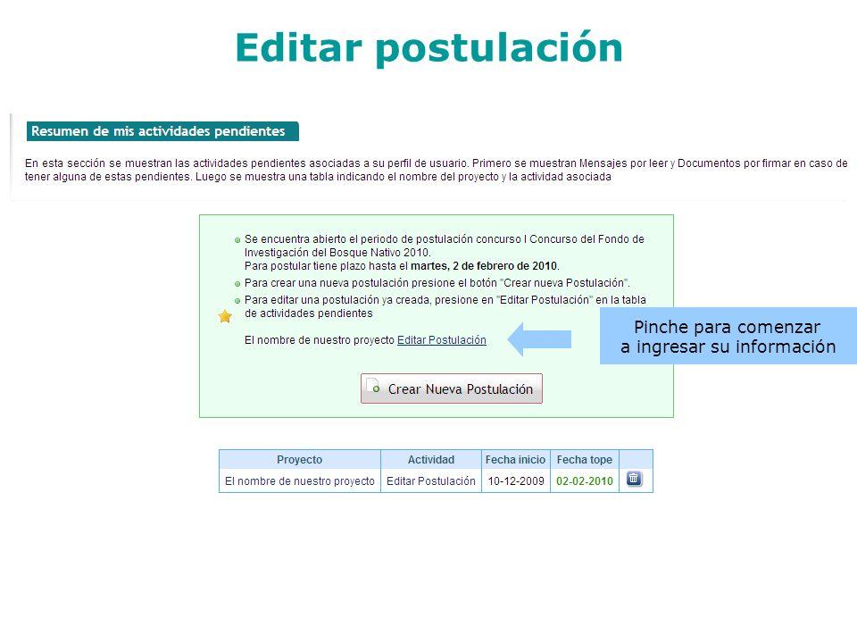 Editar postulación Pinche para comenzar a ingresar su información