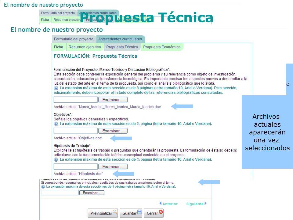 En la propuesta técnica, se deberá adjuntar archivos de texto (preferencia PDF), en cada uno de los campos requeridos. Tener presente la máxima extens