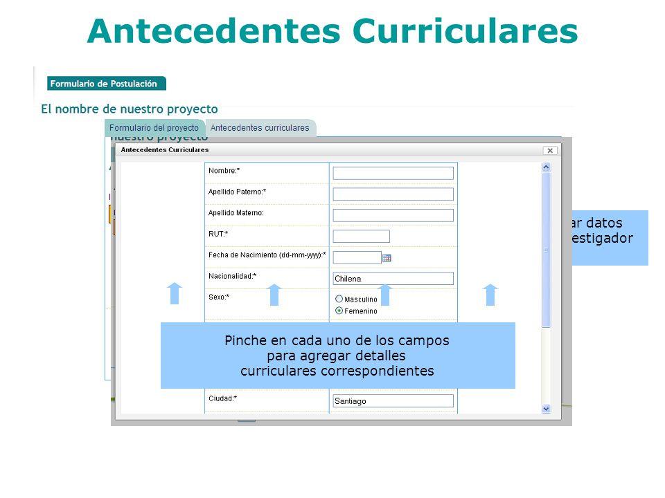 Antecedentes Curriculares Pinche para editar datos personales del investigador principal Pinche en cada uno de los campos para agregar detalles curric