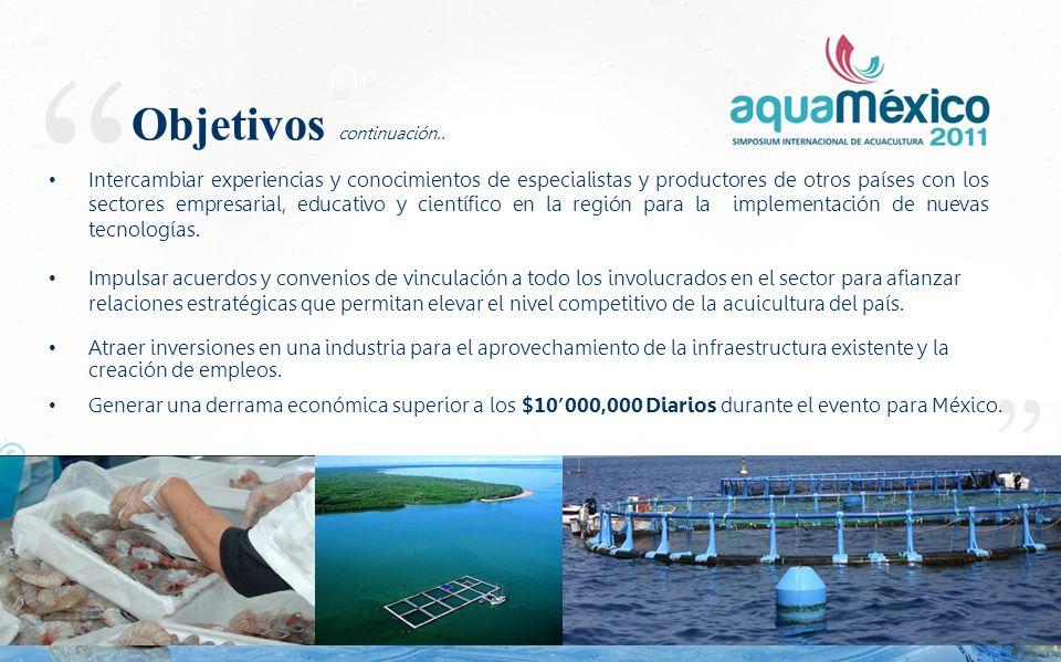 Integrar al sector acuícola nacional e internacional para encontrar soluciones con el fin de lograr una producción rentable y sustentable, que provea un alimento sano, seguro e inagotable para la humanidad.