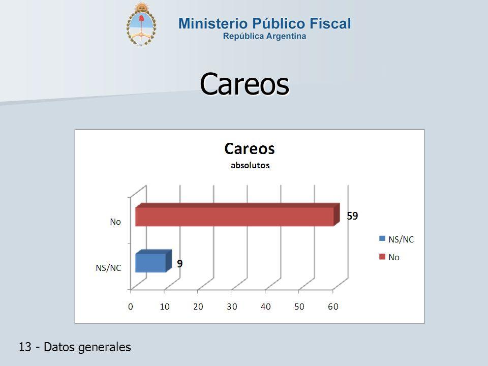 Careos 13 - Datos generales