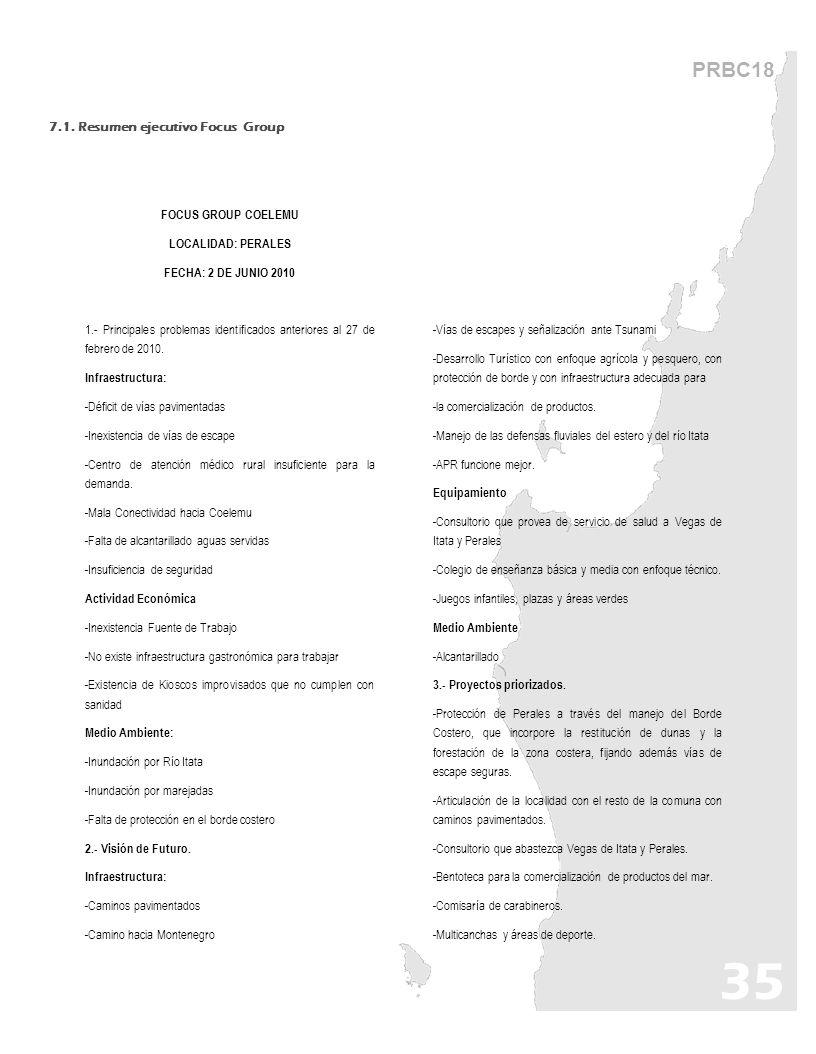 PRBC18 7.1. Resumen ejecutivo Focus Group FOCUS GROUP COELEMU LOCALIDAD: PERALES FECHA: 2 DE JUNIO 2010 1.- Principales problemas identificados anteri