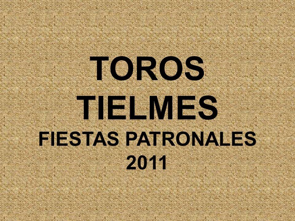 TOROS TIELMES FIESTAS PATRONALES 2011