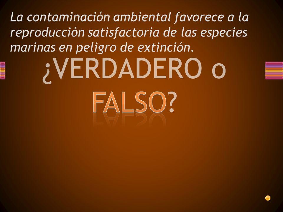 ¿VERDADERO o FALSO? La contaminación ambiental favorece a la reproducción satisfactoria de las especies marinas en peligro de extinción.