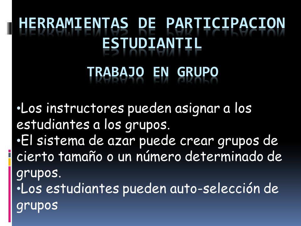 Los instructores pueden asignar a los estudiantes a los grupos.