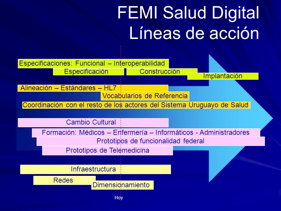 FEMI Salud Digital Líneas de acción Especificaciones: Funcional – Interoperabilidad Construcción Implantación Alineación – Estándares – HL7 Vocabulari