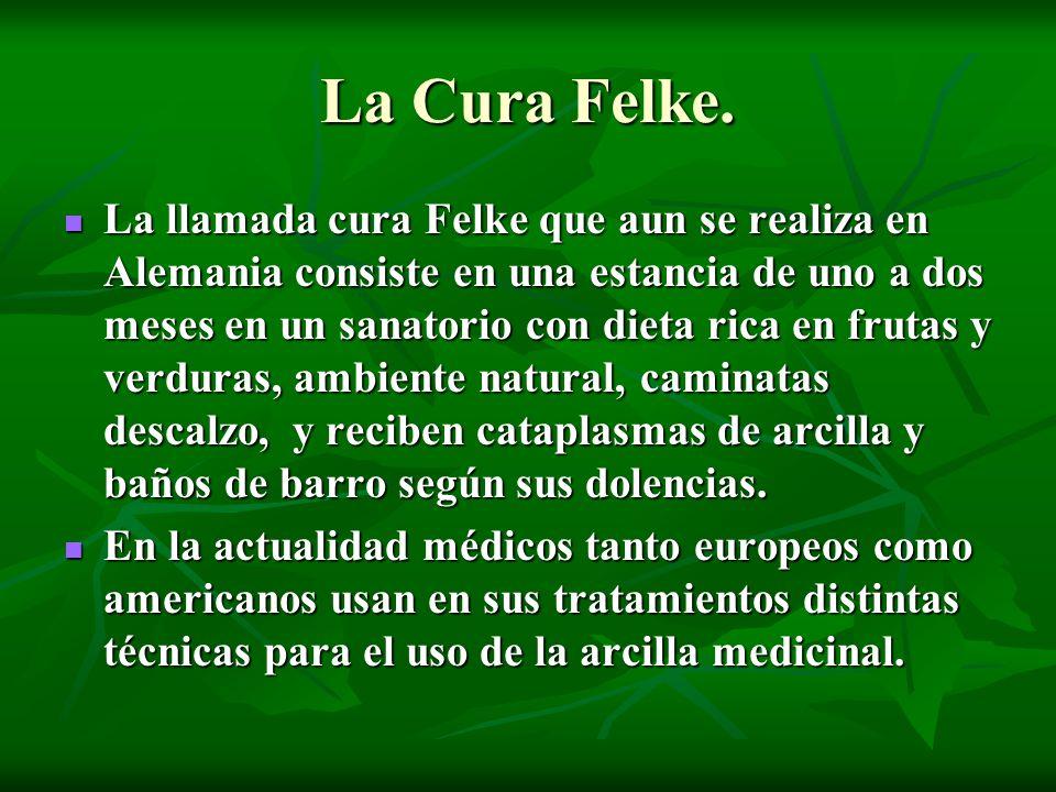 La Cura Felke. La llamada cura Felke que aun se realiza en Alemania consiste en una estancia de uno a dos meses en un sanatorio con dieta rica en frut