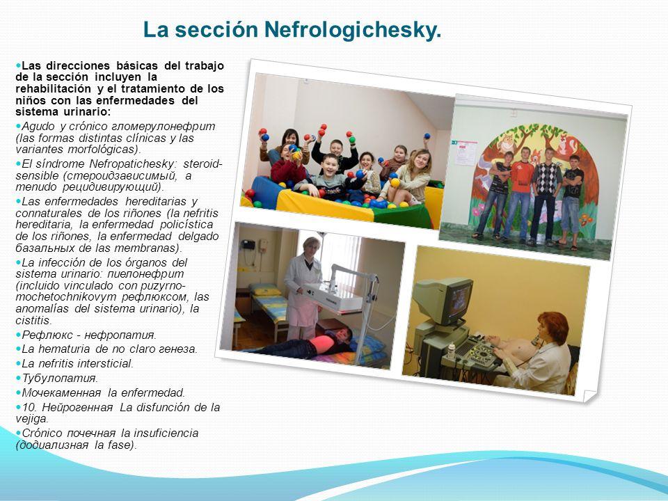 Las direcciones básicas del trabajo de la sección incluyen la rehabilitación y el tratamiento de los niños con las enfermedades del sistema urinario: Agudo y crónico гломерулонефрит (las formas distintas clínicas y las variantes morfológicas).