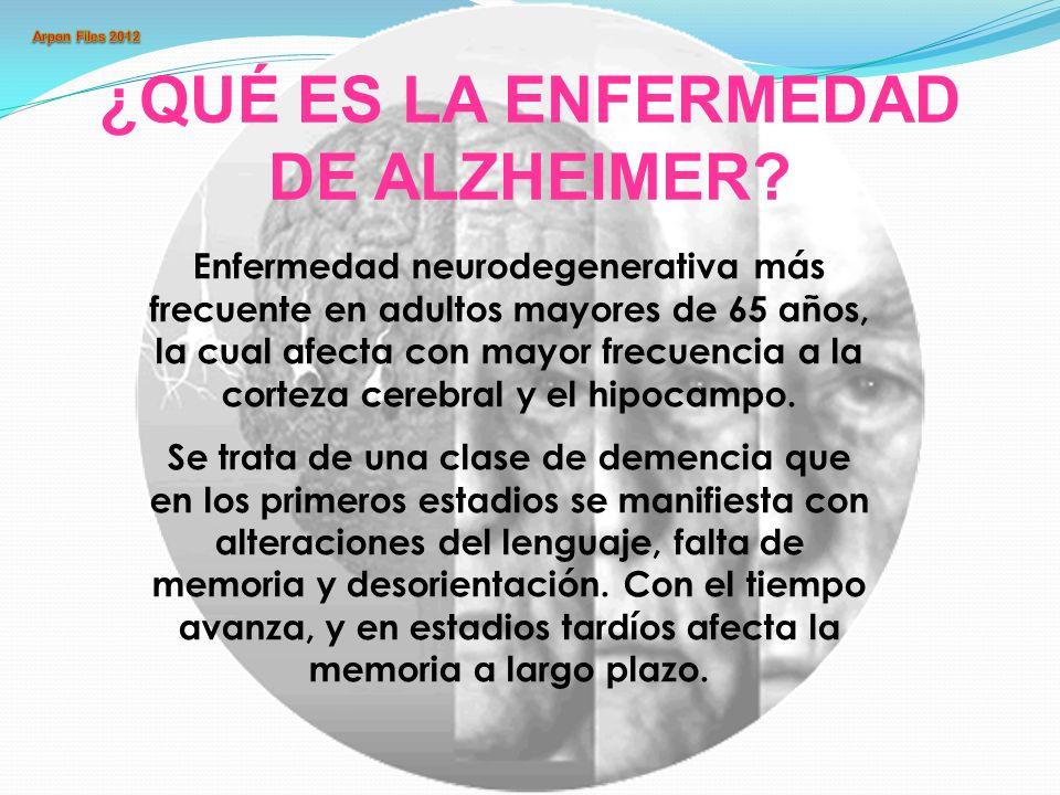¿QUÉ ES LA ENFERMEDAD DE ALZHEIMER? Enfermedad neurodegenerativa más frecuente en adultos mayores de 65 años, la cual afecta con mayor frecuencia a la
