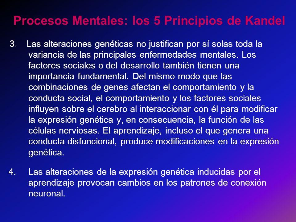 Procesos Mentales: los 5 Principios de Kandel 3. Las alteraciones genéticas no justifican por sí solas toda la variancia de las principales enfermedad