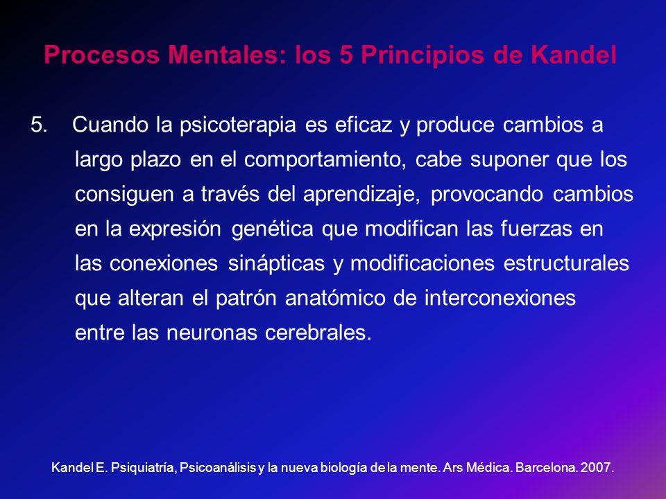 Procesos Mentales: los 5 Principios de Kandel 5. Cuando la psicoterapia es eficaz y produce cambios a largo plazo en el comportamiento, cabe suponer q