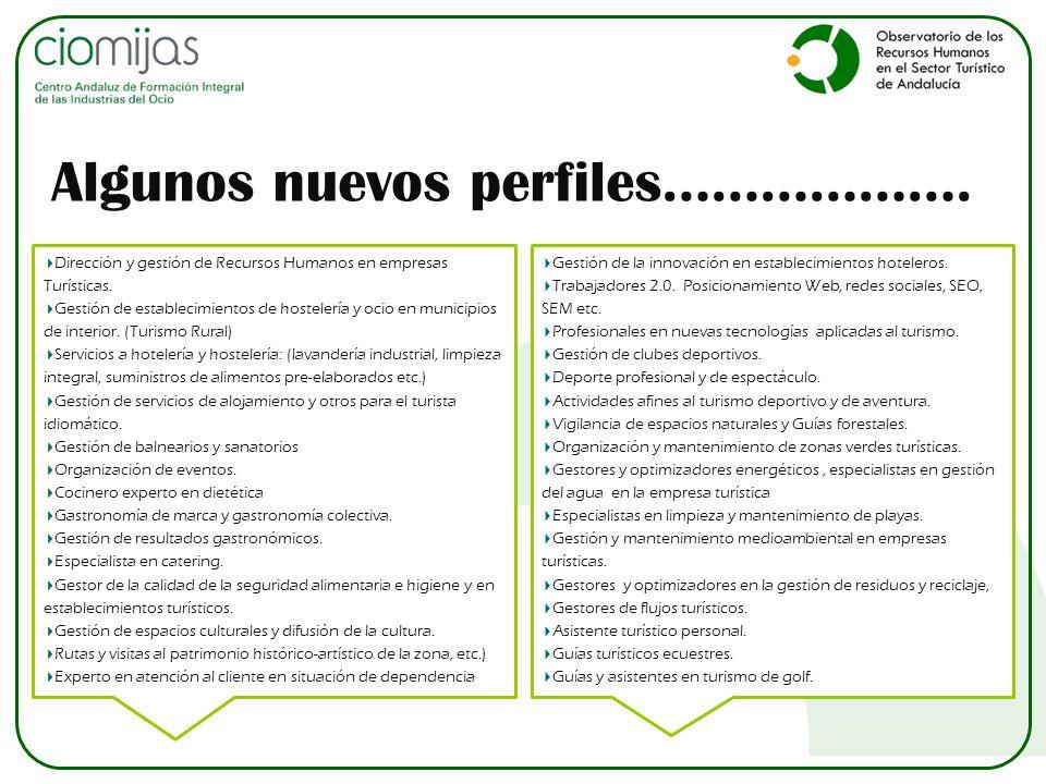 Dirección y gestión de Recursos Humanos en empresas Turísticas. Gestión de establecimientos de hostelería y ocio en municipios de interior. (Turismo R