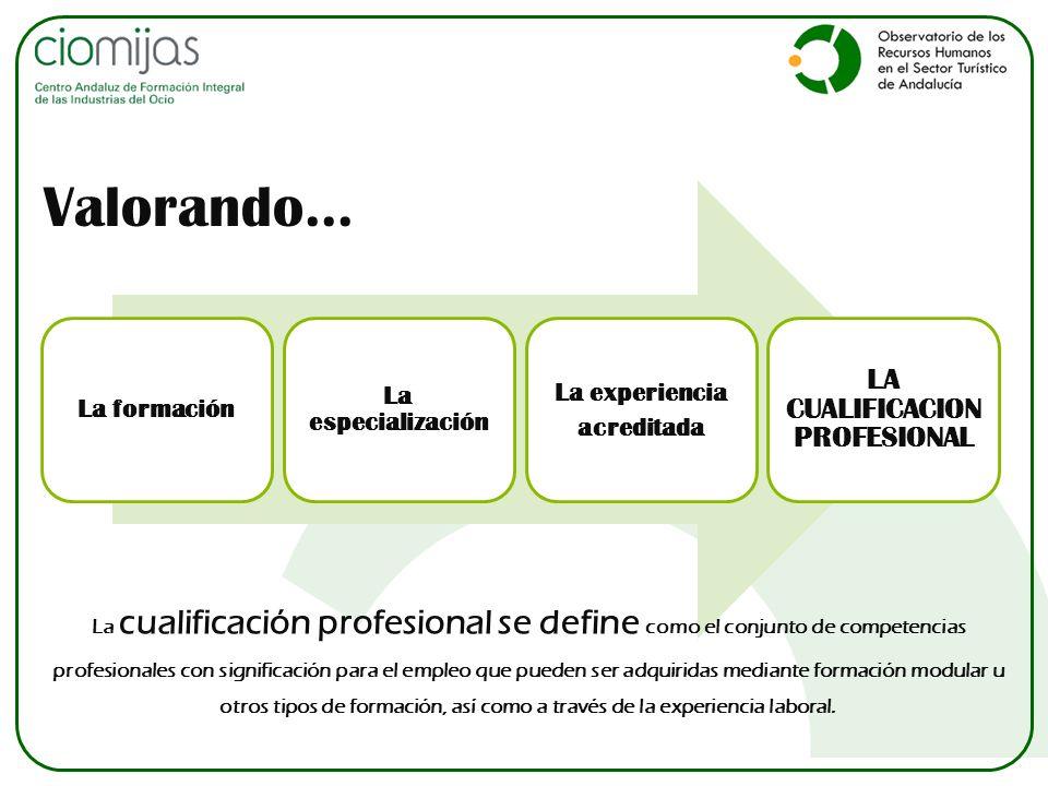La formación La especialización La experiencia acreditada LA CUALIFICACION PROFESIONAL Valorando... La cualificación profesional se define como el con