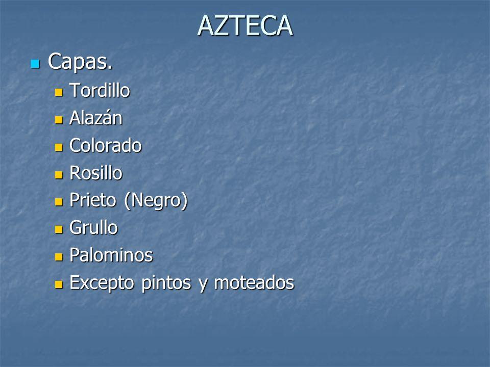 AZTECA Capas.Capas.