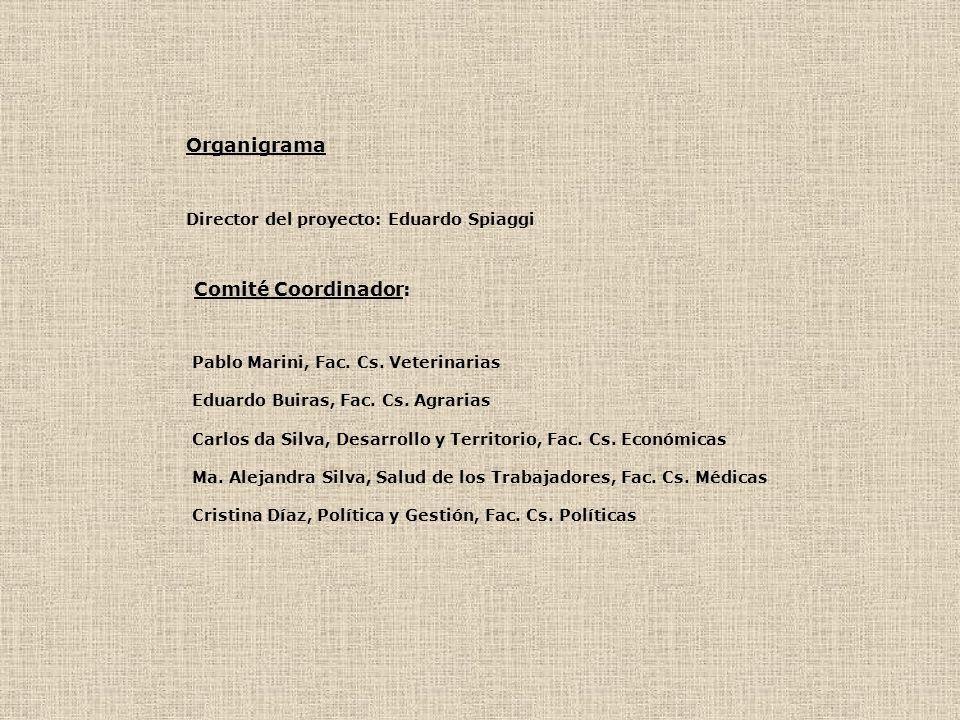Organigrama Director del proyecto: Eduardo Spiaggi Comité Coordinador: Pablo Marini, Fac. Cs. Veterinarias Eduardo Buiras, Fac. Cs. Agrarias Carlos da