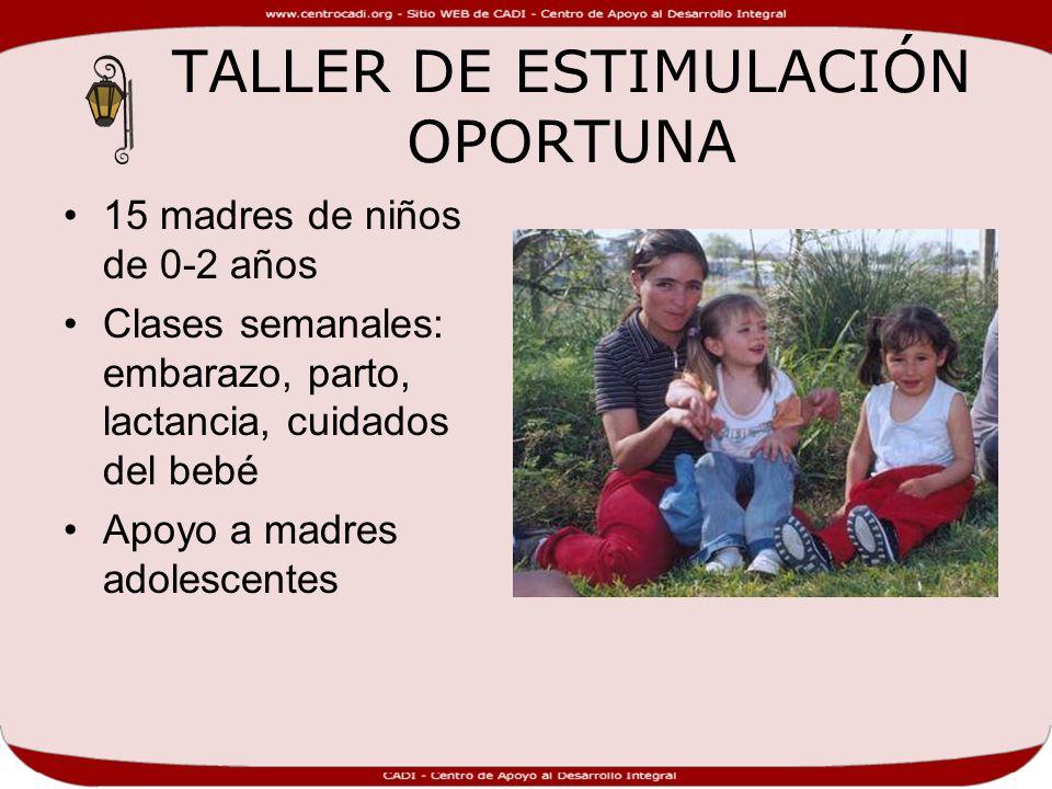 TALLER DE ESTIMULACIÓN OPORTUNA 15 madres de niños de 0-2 años Clases semanales: embarazo, parto, lactancia, cuidados del bebé Apoyo a madres adolescentes