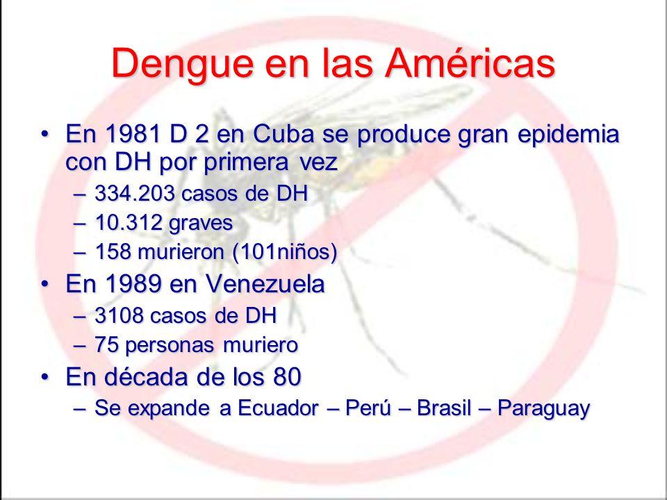 Dengue en las Américas En 1981 D 2 en Cuba se produce gran epidemia con DH por primera vezEn 1981 D 2 en Cuba se produce gran epidemia con DH por prim