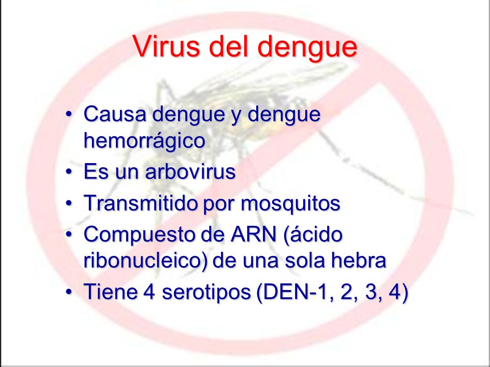 Virus del dengue Causa dengue y dengue hemorrágicoCausa dengue y dengue hemorrágico Es un arbovirusEs un arbovirus Transmitido por mosquitosTransmitido por mosquitos Compuesto de ARN (ácido ribonucleico) de una sola hebraCompuesto de ARN (ácido ribonucleico) de una sola hebra Tiene 4 serotipos (DEN-1, 2, 3, 4)Tiene 4 serotipos (DEN-1, 2, 3, 4)