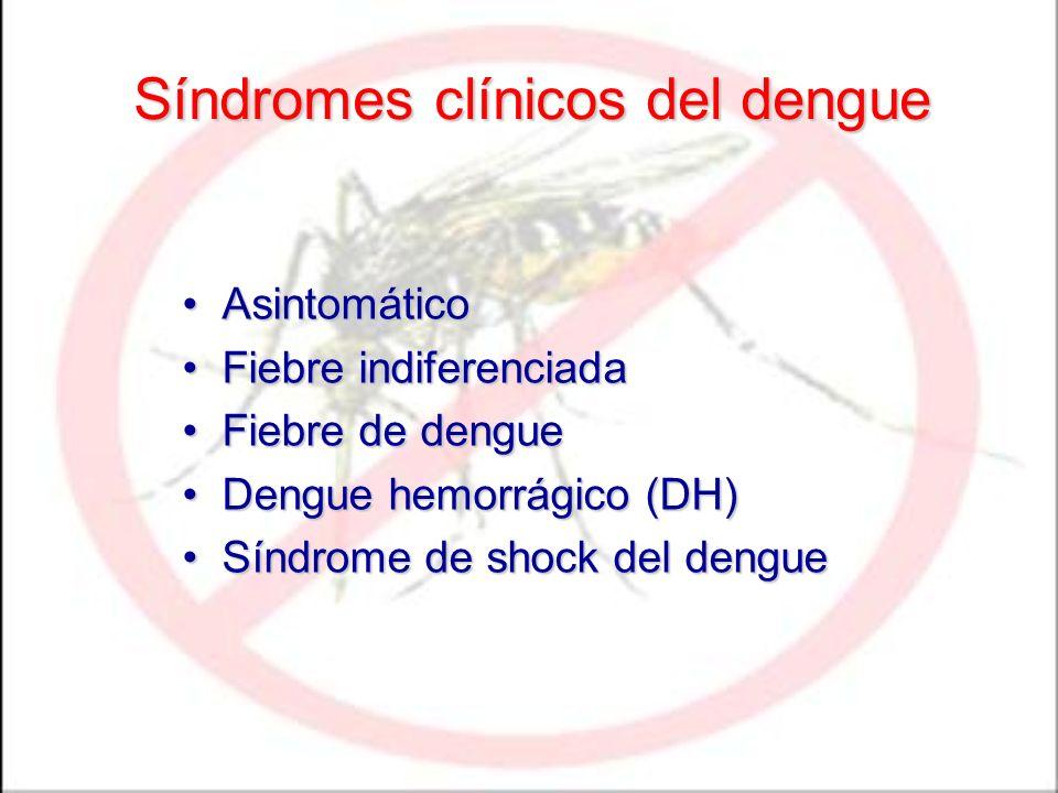 Síndromes clínicos del dengue AsintomáticoAsintomático Fiebre indiferenciadaFiebre indiferenciada Fiebre de dengueFiebre de dengue Dengue hemorrágico