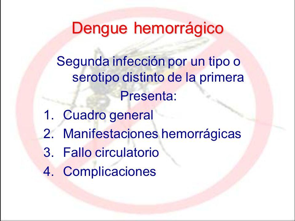 Dengue hemorrágico Segunda infección por un tipo o serotipo distinto de la primera Presenta: 1.Cuadro general 2.Manifestaciones hemorrágicas 3.Fallo c