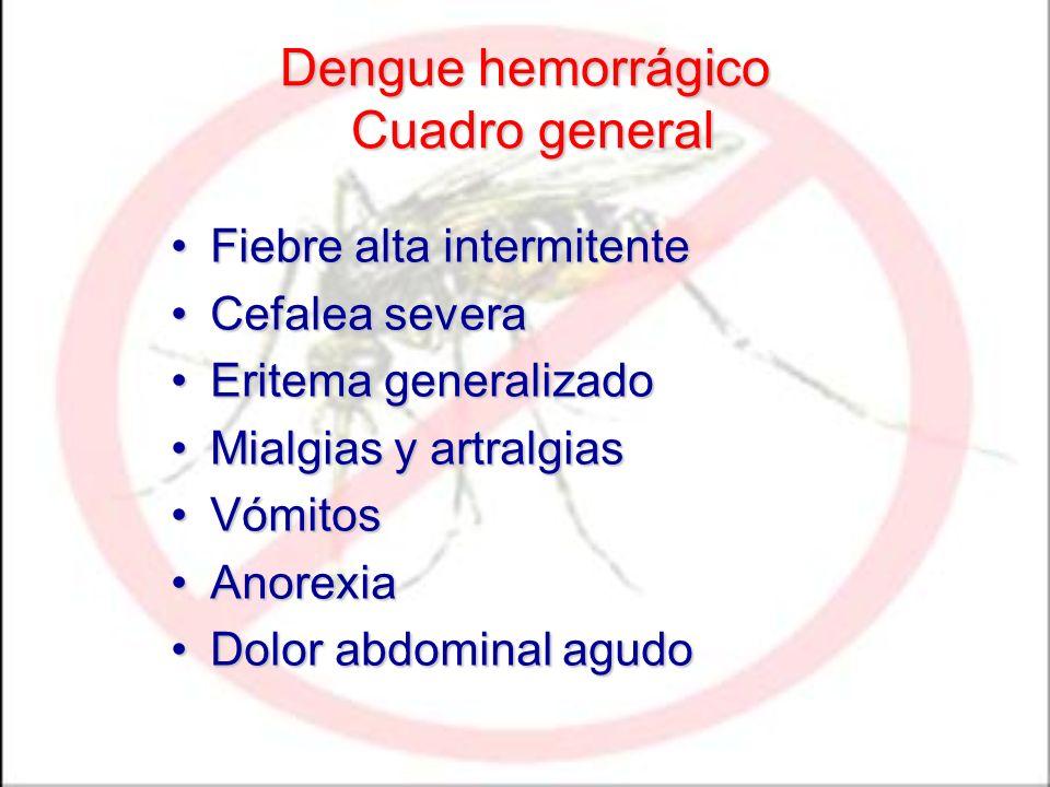 Dengue hemorrágico Cuadro general Fiebre alta intermitenteFiebre alta intermitente Cefalea severaCefalea severa Eritema generalizadoEritema generalizado Mialgias y artralgiasMialgias y artralgias VómitosVómitos AnorexiaAnorexia Dolor abdominal agudoDolor abdominal agudo