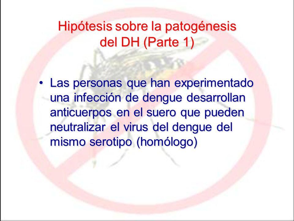 Hipótesis sobre la patogénesis del DH (Parte 1) Las personas que han experimentado una infección de dengue desarrollan anticuerpos en el suero que pue