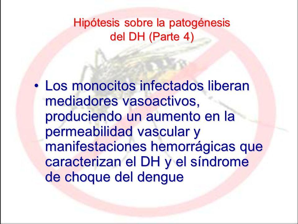 Hipótesis sobre la patogénesis del DH (Parte 4) Los monocitos infectados liberan mediadores vasoactivos, produciendo un aumento en la permeabilidad va