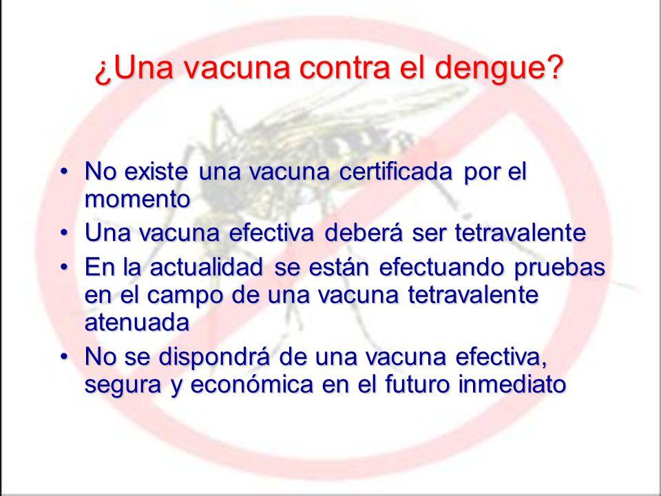 ¿Una vacuna contra el dengue? No existe una vacuna certificada por el momentoNo existe una vacuna certificada por el momento Una vacuna efectiva deber
