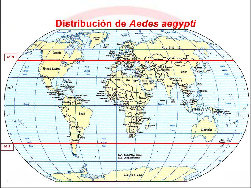 45 N 35 S Distribución de Aedes aegypti