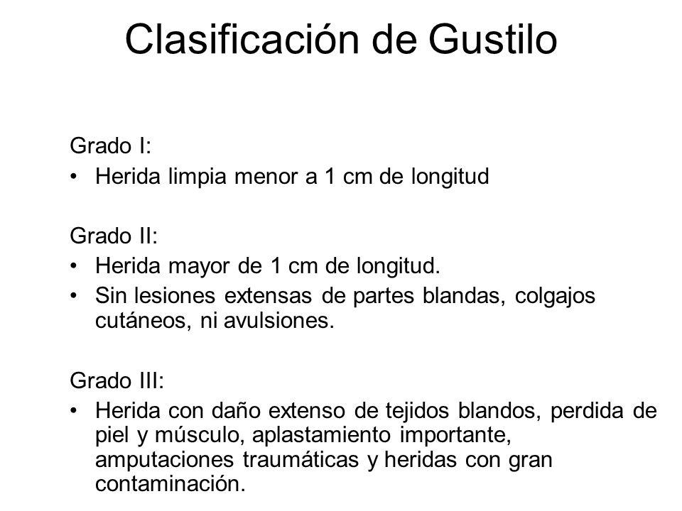 Gustilo II