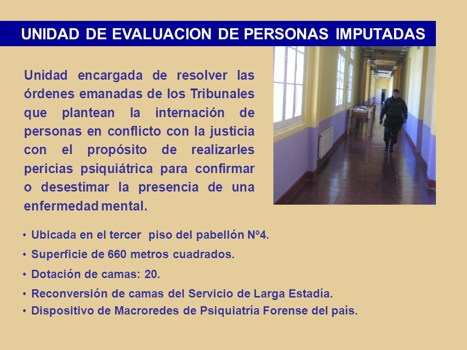 PROGRAMA DE EDUCACIÓN FISICA TALLER DE MANUALIDADES