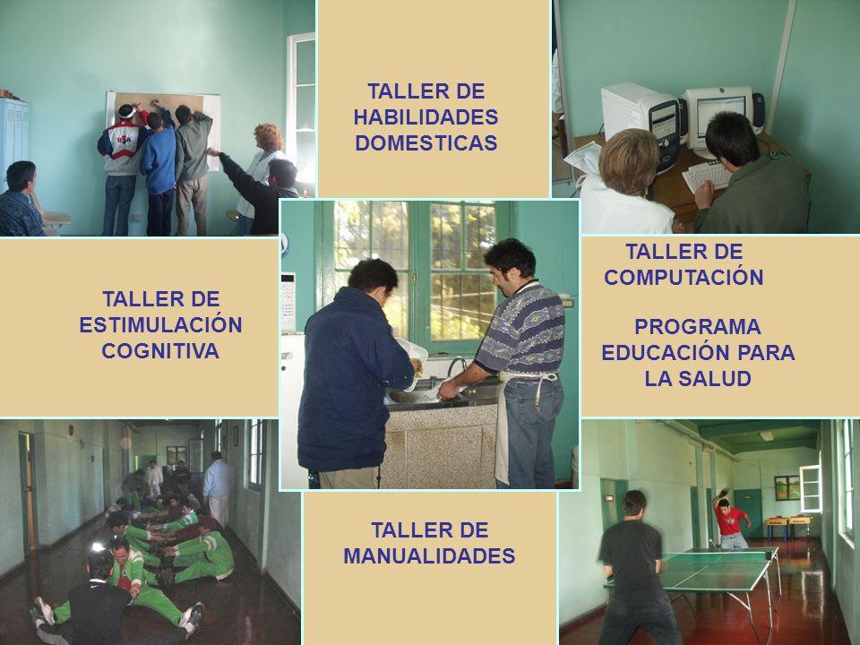 PROGRAMA ENTRENAMIENTO DE HABILIDADES EN EL MEDIO EXTERNO ENTRENAMIENTO DE HABILIDADES INSTRUMENTALES