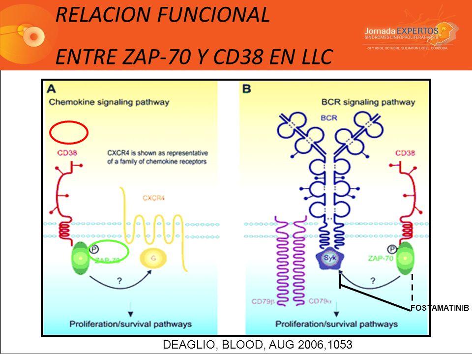 RELACION FUNCIONAL ENTRE ZAP-70 Y CD38 EN LLC DEAGLIO, BLOOD, AUG 2006,1053 FOSTAMATINIB
